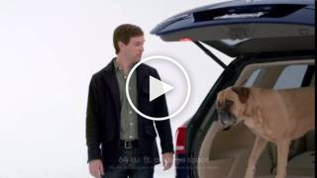 """Drivers with Dogs"" Volkswagen Tiguan Commercial 
